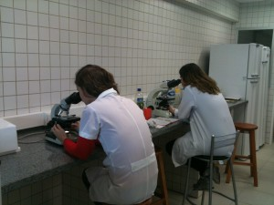 Laboratório de Parasitologia Animal